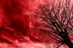 6: Red mist